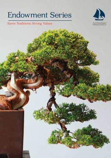 brochure2019